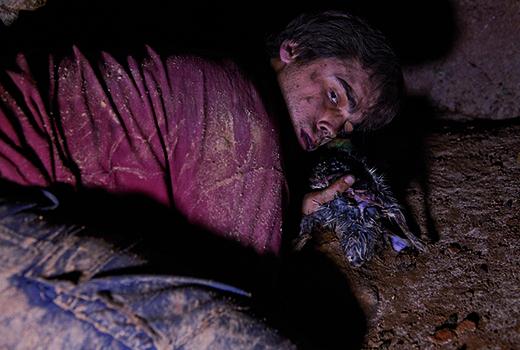 Die Höhle – Überleben ist ein Instinkt, keine Wahl Szene 2