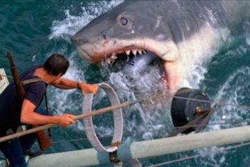 Der weiße Hai Jaws