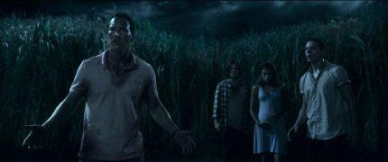 In the Tall Grass Netflix Stephen King Im hohen Gras