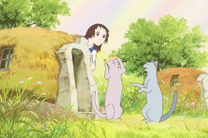 Das Königreich der Katzen