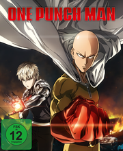 One Punch Man Vol 1