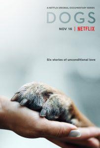 Hunde Dogs Netflix