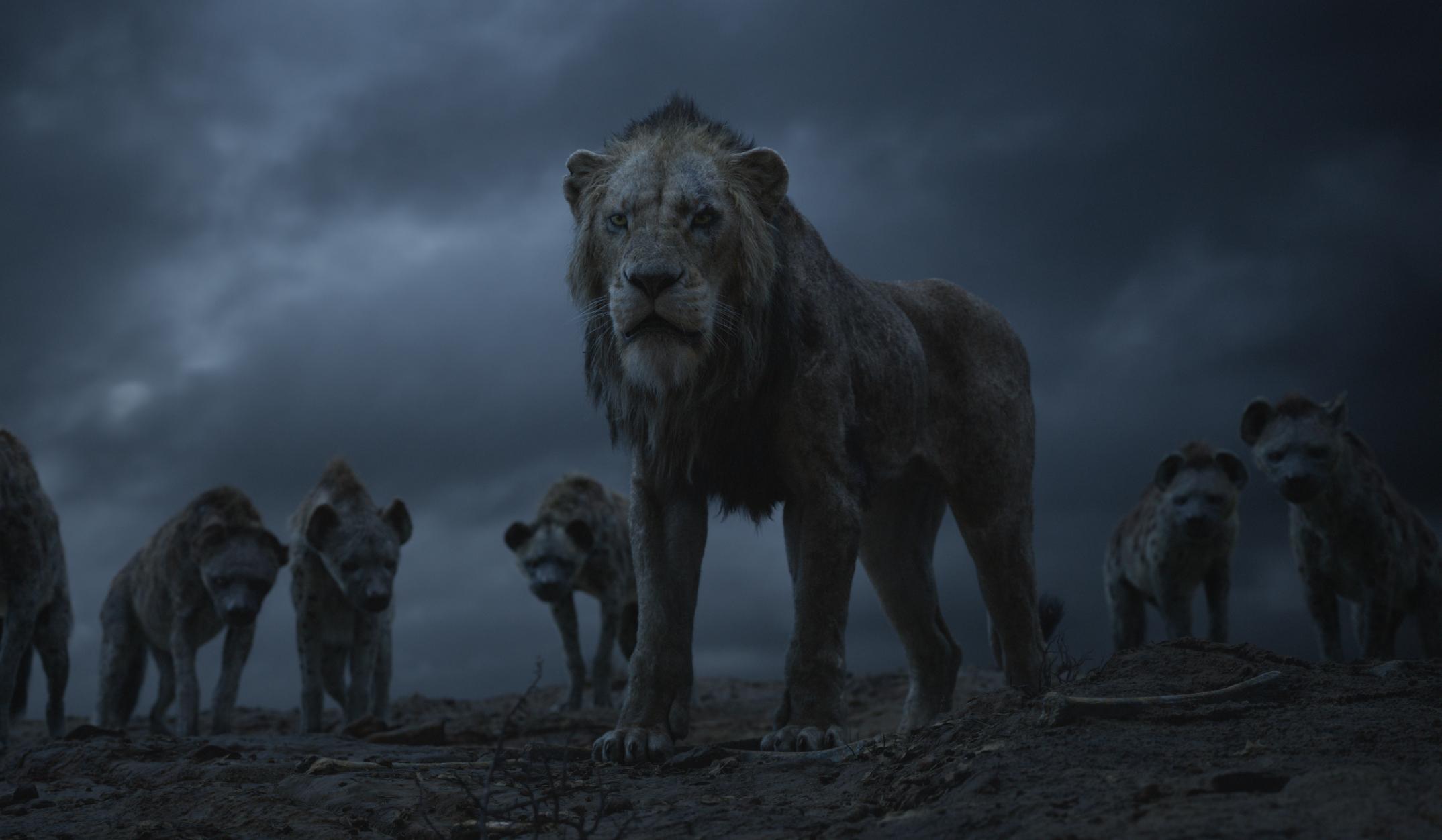König Der Löwen Film