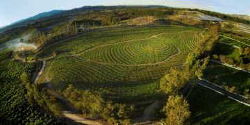 Unsere grosse kleine Farm