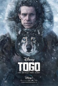 Togo Der Schlittenhund
