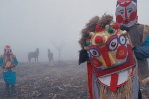 Qiangs Journey
