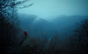Hunted Waldsterben
