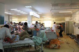 Pandemie Gamgi The Flu