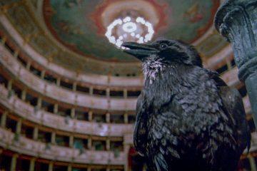 Terror in der Oper Opera Dario Argento