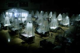 Carriers – Flucht vor der tödlichen Seuche