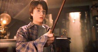 Harry Potter und der Stein der Weisen Philosopher