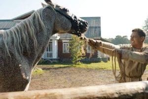 Der Knecht – Einmal Mittelalter und zurück Kholop