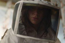 Schwarm der Schrecken La Nuée The Swarm Netflix